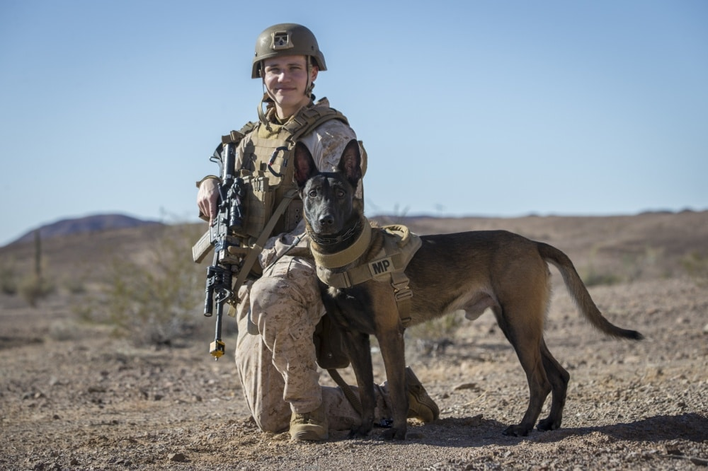 military dog and handler pose for picture